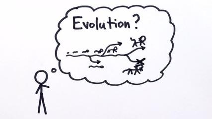 Какво всъщност представлява еволюцията?