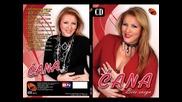 Cana - Tek sad zivim - (Audio 2013) BN Music