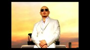 Pitbull feat. Dj Laz - Alcoholic