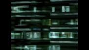 Iris по btv (от 1 август - 22:30)