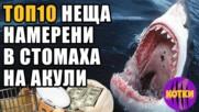 Топ 10 Странни неща открити в стомаха на акули
