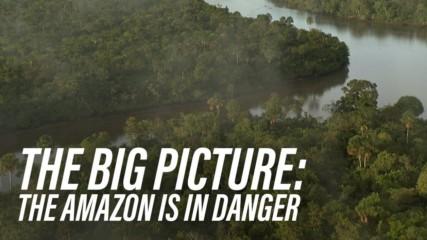 The scary reasons Bolsonaro is bad for the Amazon