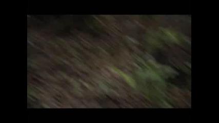 Bear Grylls убива боа