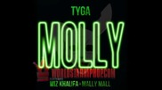 Tyga ft Wiz Khalifa and Mally Mall - Molly [official Song] 2013