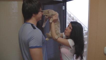 """Мило, намерих котенце"" - Типично Shorts"