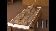 Скелетът на вампира от Созопол  вече може да бъде видян в НИМ