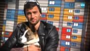 За бездомните кучета с любов: Вижте призива на Съквартирантите