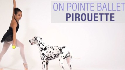 On Pointe Ballet: Pirouette