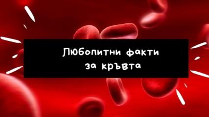 Любопитни факти за кръвта