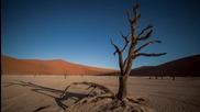 Пустинята Намиб - пустинята с най-живописните дюни