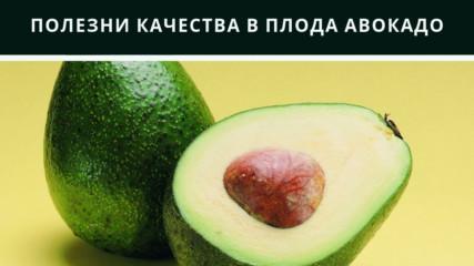 Полезни качества в плода авокадо