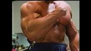 Arni - Biceps