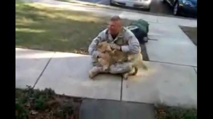 Куче плаче от радост като вижда стопанина си!