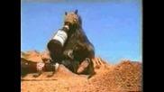 Реклама: Бира - Забавна Реклама С Мравки