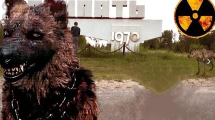 10 Мутирали Животни в Чернобил Заснети на Камера. Част 2