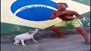 Забавно видео ! Танцов дует – човек и куче ...