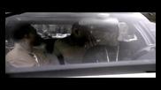 50 Cent - Hustler Ambition [ Subs ][dvdrip High Quality]