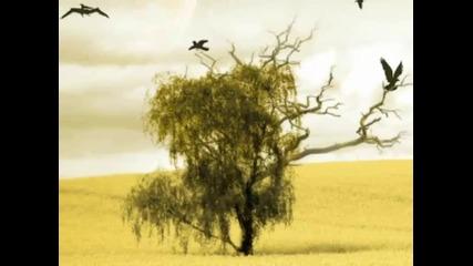 Xavier Naidoo - Mut zur Veraenderung