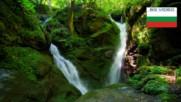 Раздвоеният водопад в омагьосаната гора