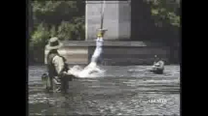 Рибарче