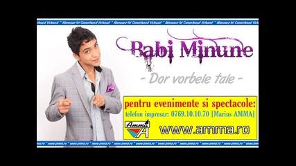 Exclusiv 2012 Babi Minune - Dor vorbele tale
