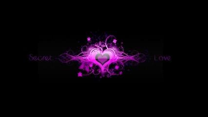 Dj 8-bit - Secret Love 2011