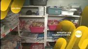"""Епизод 11 от сезон 2 на """"Кошмари в кухнята"""""""