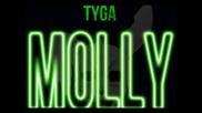 Tyga ft. Wiz Khalifa & Mally Mall - Molly