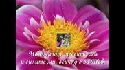 Julissa - Tu eres mi amado - Bg prevod Vbox7