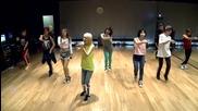 2ne1 - Falling In Love ( Dance Practice )