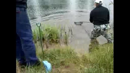 На риба в Годеч
