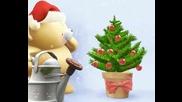 Теди - Коледно Растение