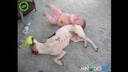 Куче забавлява бебе