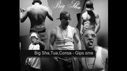 Big Sha, Tua, Consa, Vandamme - Gips Sme