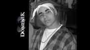 Domenik - Животът в моя роден кът