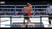 Целият мач ! Владимир Кличко победи Кобрата в 5-ия рунд с нокаут !