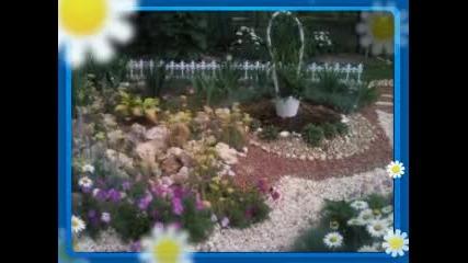 Градината -2