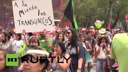 Mexico: Hundreds rile against Monsato at 'Carnival of Corn' in Mexico City