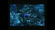 Enya - Final Fantasy - Memory Of The Tree
