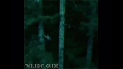 Twilight Tribute