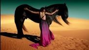 Обичам Те . . . | превод | Je T' aime - Lara Fabian