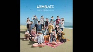 The Wombats - Schumacher the Champagne [track 10]