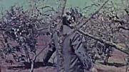 На прага на пролетта ( Zao Chun Er Yue 1963 )