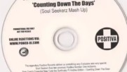 Sunfreakz feat. Andrea Britton - Counting Down The Days(soul Seekerz Mash Up )
