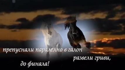Галоп