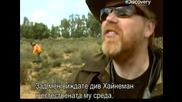 Ловци на митове - Слоновете се страхуват от мишки - с Бг превод