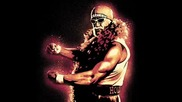 Hulk Hogan Theme Song - Soullord