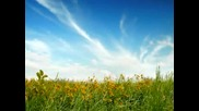 Любэ - По Высокой Траве