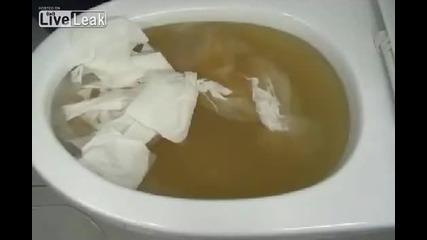 японско изобретение за отпушване на тоалетна