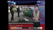 Куче охранява собственикa си, който е припаднал на пътя